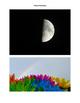 Environment Photos