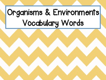 """Environments Freebie {Part of """"Food Chains and Organisms"""""""