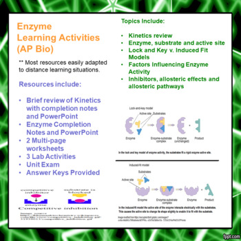 Enzyme Learning Packet for Advanced and AP Biology