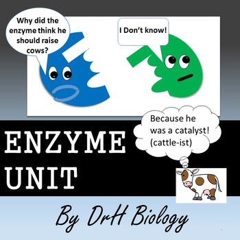 Enzymes Full Unit: Notes, Activity, Lab, Homework, and Test!