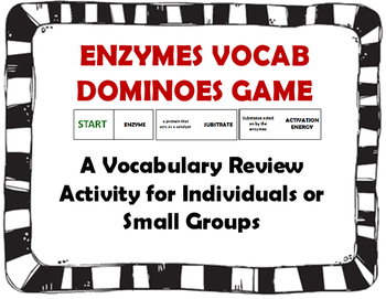 Enzymes Vocab Dominoes Games