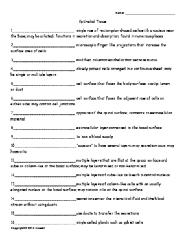 Epithelial Tissue Quiz or Worksheet for Anatomy