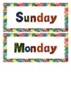 Eric Carle Inspired Classroom - Days of the Week - Calendar
