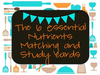6 Essential Nutrients activity