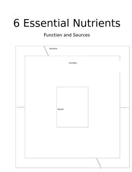 Essential Nutrients Graphic Organizer