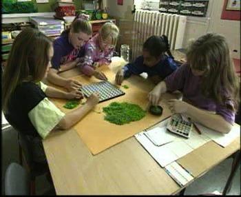 (3L) Estimates: Math Activities with Video