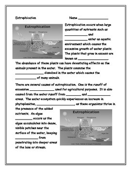 Eutrophication Note-Taking Guide