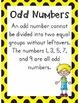 Even & Odd Numbers Mini Unit