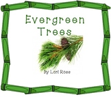 Evergreen Trees Smart Board