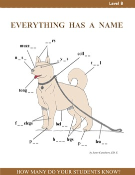 Everything Has a Name - Activity Pack Level B - Vocabulary