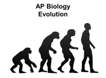 Evolution - AP Biology and Honors Biology