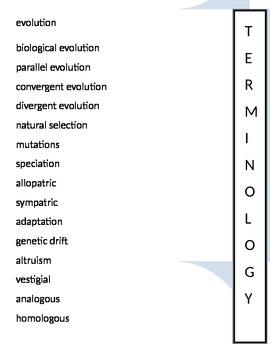 Evolution Foldable