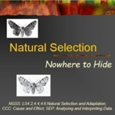 Evolution Natural Selection Peppered Moths
