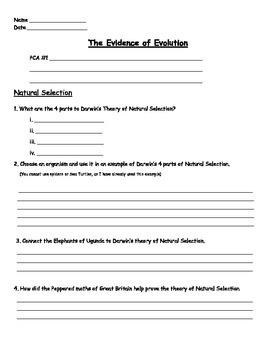 Evolution - Natural Selection Worksheet