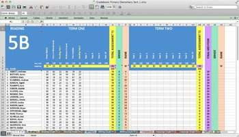 Excel Grade Book Spreadsheet for Elementary/Primary with Graphs