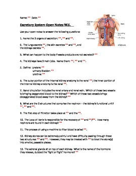 Excretory Open Notes W.S. and KEY