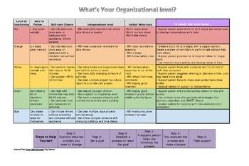 Executive Functioning Organizational Level Chart