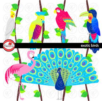 Exotic Birds Clipart by Poppydreamz
