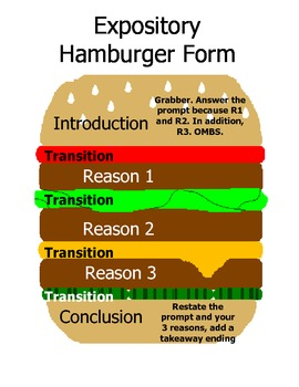 Expository Essay Format- Hamburger