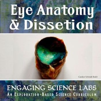 Cow Eye Dissection and Eye Anatomy—2 Labs w/ Full Color Photos
