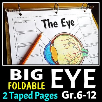 Eye Foldable - Big Foldable for Interactive Notebooks or Binders