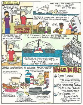 Eye Opening Comics- Save the Sharks