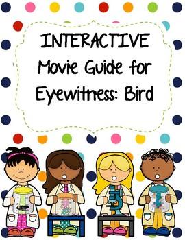 Eyewitness Video Series - BIRDS Video Worksheet (Movie Guide)