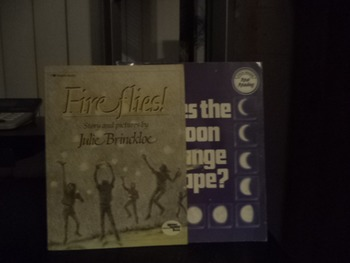 FIRE FLIES    DOES THE MOON CHANGE SHAPE   (SET OF2)