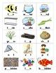 FISH TANK - a fishy short vowel game