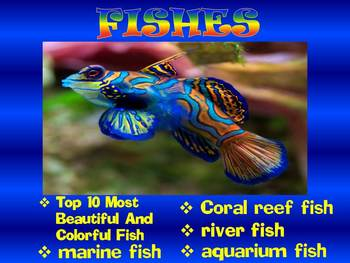 Fish - PowerPoint presentation - Coral reef - Marine and R