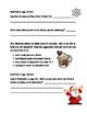 FLAT STANLEY- Stanley's Christmas Adventure Comprehension Packet