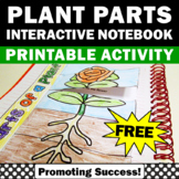 FREE Download Parts of a Plant Interactive Notebook Activi