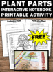 FREE Parts of a Plant Interactive Notebook Activity for Ea