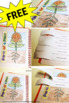 FREE Parts of a Plant Interactive Notebook Craftivity for