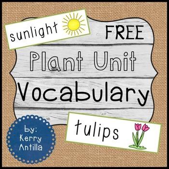 *FREE* Plant Unit Vocabulary