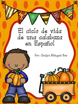FREE Pumpkin Life Cycle Samples in Spanish