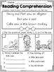 FREE Reading Comprehension SET 3 - Beginning Readers