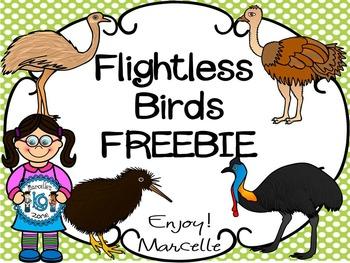 FREE- FLIGHTLESS BIRDS CLIP ART FREEBIE