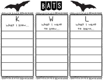 FREEBIE Bat KWL Chart