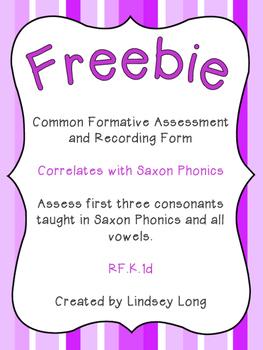 FREEBIE Letter Recognition Assessment
