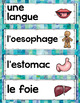 FRENCH HUMAN BODY ORGAN SYSTEMS UNIT - GRADE 5 SCIENCE (LE