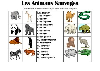 FRENCH - Picture Match - Les Animaux Sauvages (wild animals)