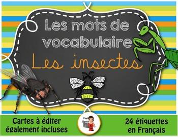 Les insectes - Mots de vocabulaire - 24 affiches (script e