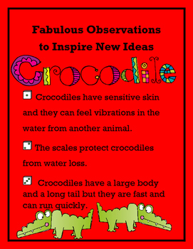 Fabulous Observations to New Ideas - Crocodile