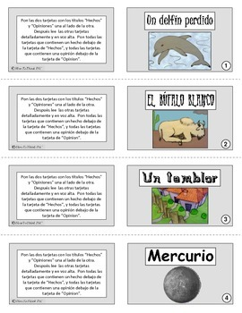 Fact & Opinion Card Columns - SPANISH
