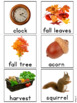 Fall Vocabulary Photo Flash Cards