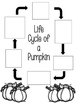 Fall Centers for Your Class Party
