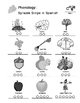 Fall - Curriculum‐Based Language Enrichment Worksheets & A