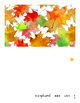 Fall Is Here (BOOK by Michele Dufresne Level 1/A)