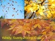 Fall Leaves-adjectives, categories, Ect